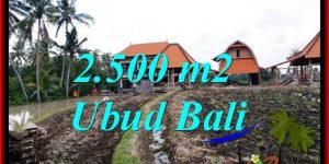 Beautiful 2,500 m2 LAND IN PEJENG UBUD FOR SALE TJUB772