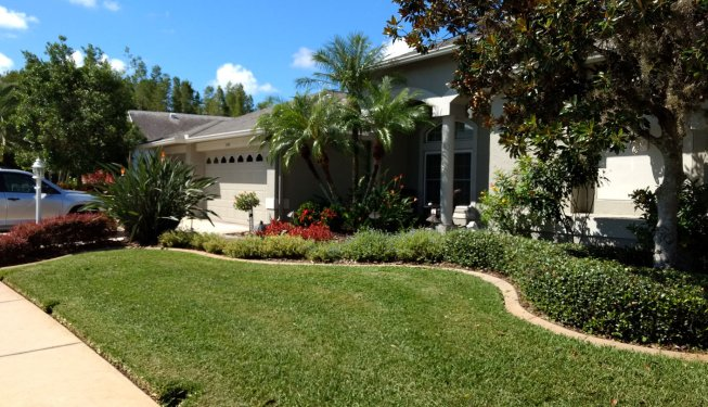 lawn care and landscape maintenance
