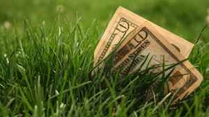 save time and money on lawn care