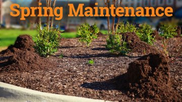 Spring landscape care for commercial properties