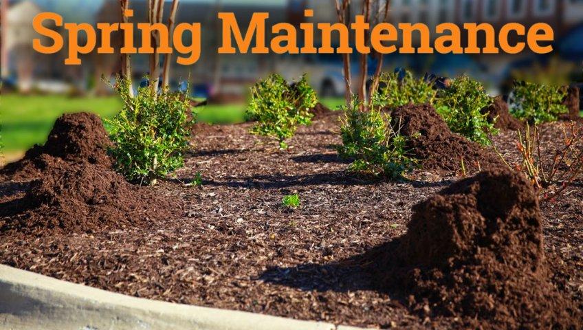 Spring landscape care for commercial properties