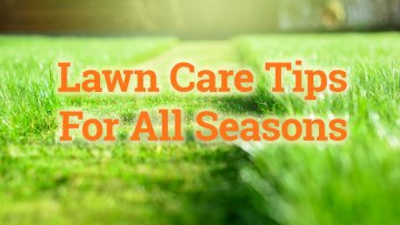 Lawn Care Tips for Fall Winter Spring and Summer