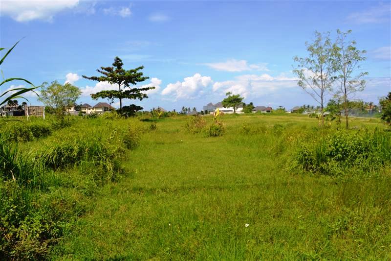 Land for sale in Canggu close to the beach  in Canggu  Bali