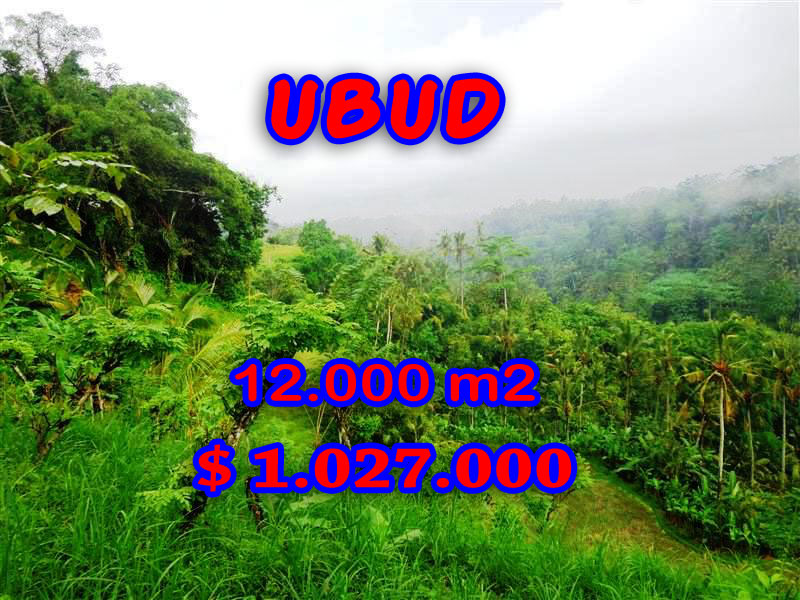 Land for sale in Bali, fabulous view in Ubud Tegalalang – TJUB254