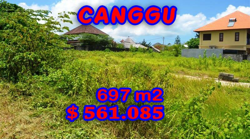 Canggu-Land-for-sale
