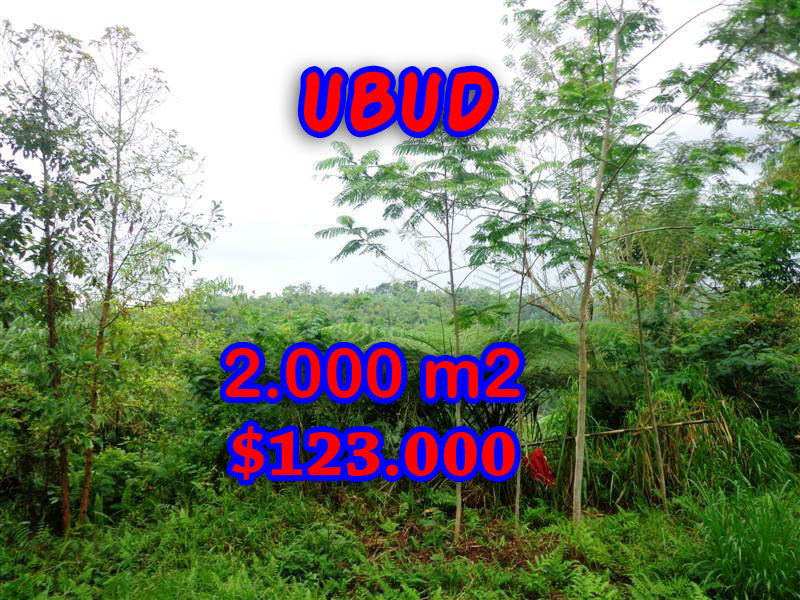 MagnificentLand for sale in Bali, river view in Ubud Tegalalang Bali – TJUB248