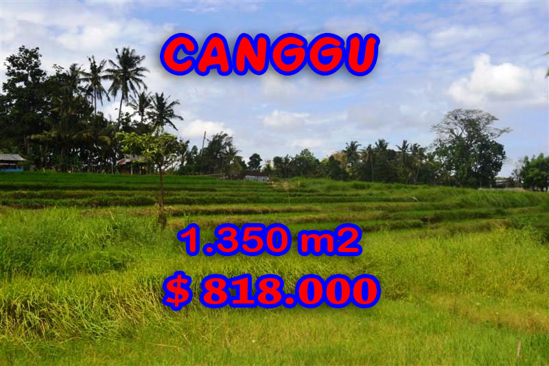 Spectacular Property for sale in Bali, land for sale in Canggu Bali  – 1,350 sqm @ $ 606