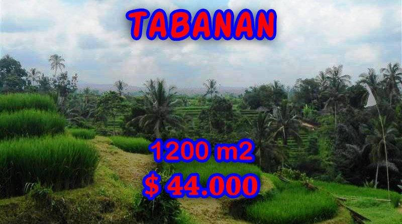 Land sale in Tabanan