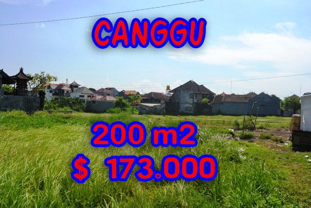 Land sale in Canggu Bali