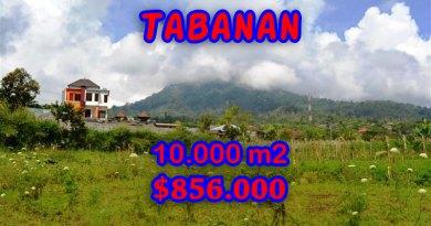 Land sale in Tabanan