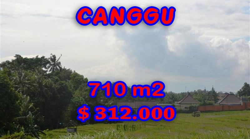 Property for sale in Canggu land