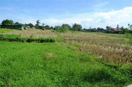 Land for sale in Canggu Batu Bolong Bali