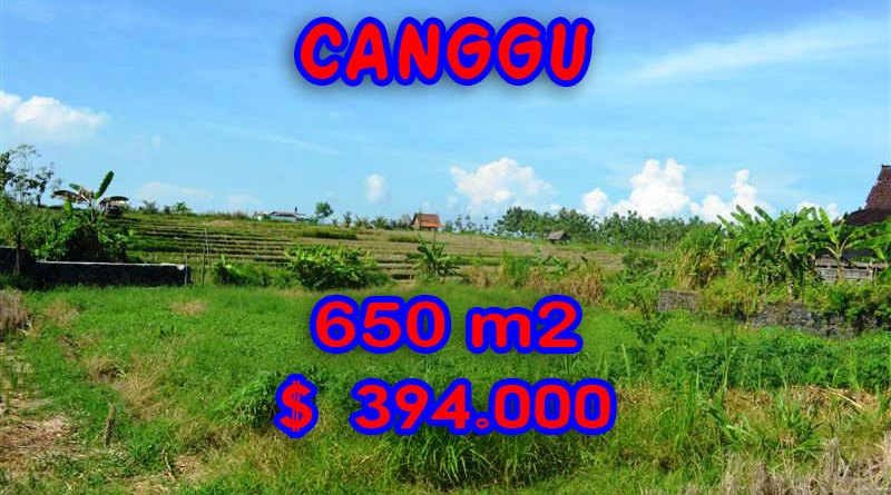 Land for sale in Canggu land