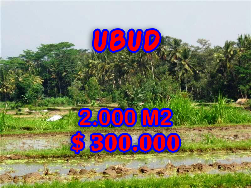 Land in Bali for sale, Fantastic view in Ubud Tampak siring – TJUB267