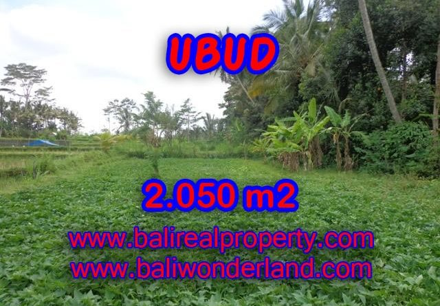 Land for sale in Bali, amazing view in Ubud Pejeng – TJUB344