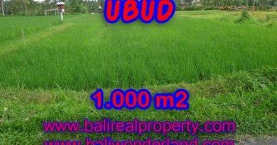 Land for sale in Bali, astonishing view in Ubud Tampak siring Bali – TJUB345
