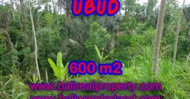 Land in Bali for sale, astounding view in Ubud Bali – TJUB346