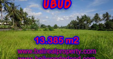 Land in Bali for sale, Outstanding view in Central Ubud Bali – TJUB357
