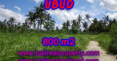 Land in Bali for sale, fantastic view in Ubud Bali – TJUB352