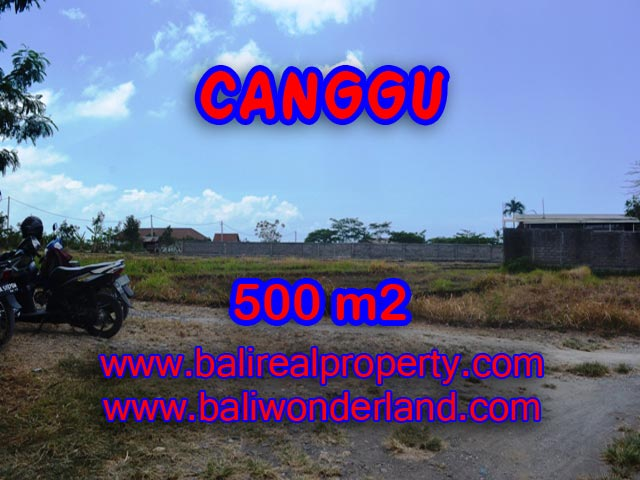 Stunning Property for sale in Bali, land for sale in Canggu Bali  – 500 sqm @ $ 850