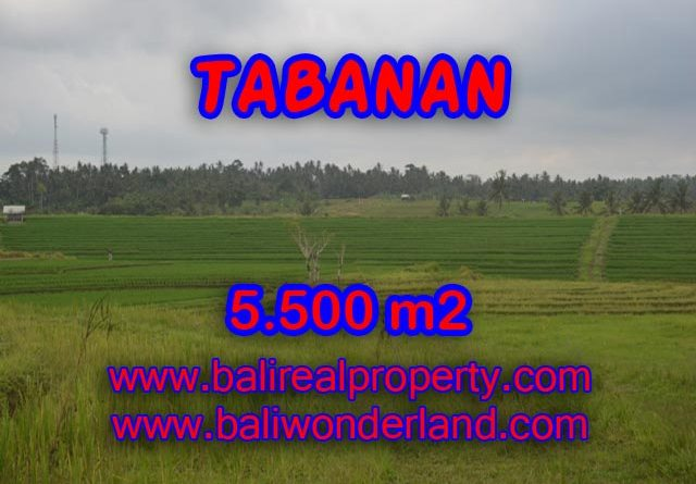 Stunning Property for sale in Bali land sale in Tabanan Bali – TJTB080