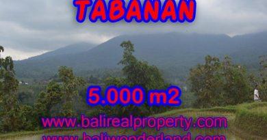 Land for sale in Tabanan Bali, Wonderful view in JATILUWIH TABANAN – TJTB079