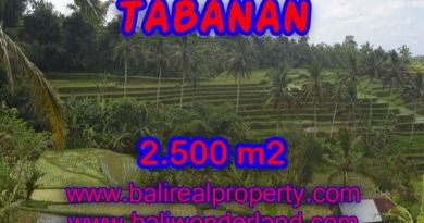 Attractive Property for sale in Bali, land for sale in Tabanan – TJTB076