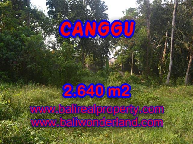 Astonishing Property in Bali, land in Canggu Bali for sale – TJCG124