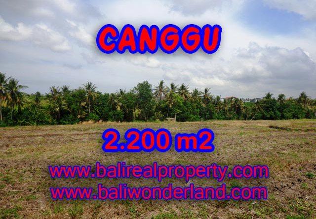 Land for sale in Bali, Fantastic view in Canggu Bali – TJCG128