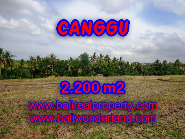 Land for sale in Bali, Fantastic view in Canggu Bali – TJCG128