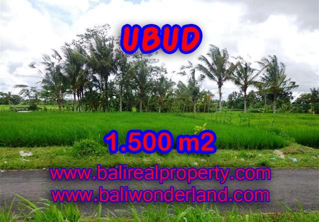 Land for sale in Ubud Bali, Astounding view in Ubud Tampak siring – TJUB369