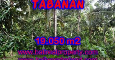 Property in Bali for sale, Astonishing land for sale in Tabanan Bali – TJTB092