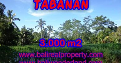 Fantastic Land for sale in Tabanan Bali, Rice fields and mountain view in Tabanan Penebel– TJTB110