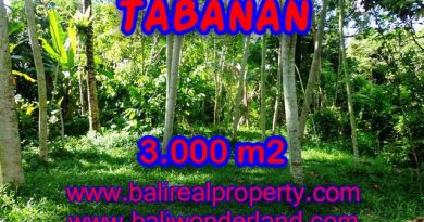 Land in Tabanan for sale, Attractive view in Tabanan Penebel Bali – TJTB109