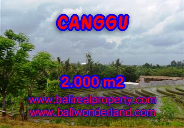 Land in Bali for sale, extraordinary view in Canggu Babakan – TJCG133