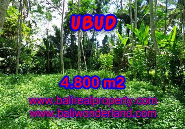 Interesting Land for sale in Ubud Bali, green lush view by the creek in Ubud Tegalalang – TJUB382