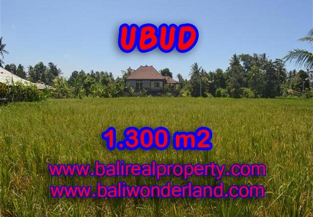 Land in Ubud for sale, Outstanding view in Ubud Center Bali – TJUB386