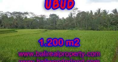 Land in Bali for sale, Stunning view in Ubud Bali – TJUB400