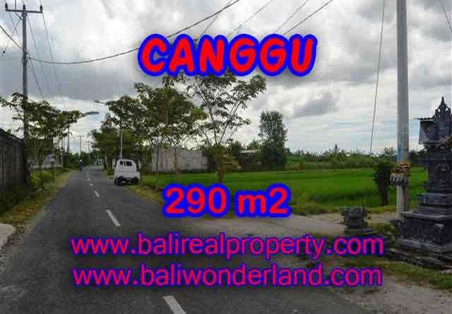 Land for sale in Bali, magnificent view Canggu Bali – TJCG141