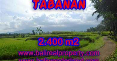 Land for sale in Bali, amazing view in Tabanan Baturiti – TJTB126