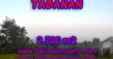 Land in Bali for sale, astounding view in Tabanan Bali – TJTB128