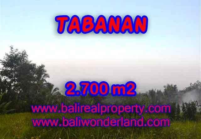 Land in Bali for sale, astounding view in Tabanan Bali – TJTB128