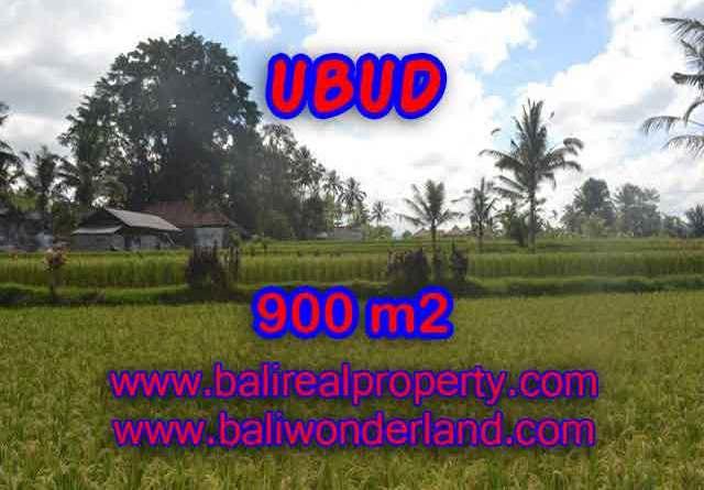 Beautiful Property for sale in Bali, LAND FOR SALE IN UBUD Bali – TJUB412