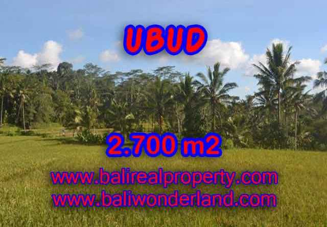 Stunning Property for sale in Bali land sale in Ubud Bali – TJUB414