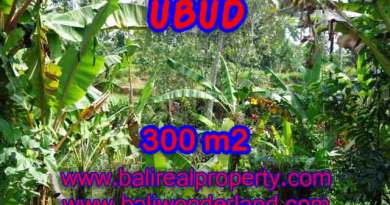 Property in Bali for sale, Astonishing land for sale in Ubud Bali – TJUB415