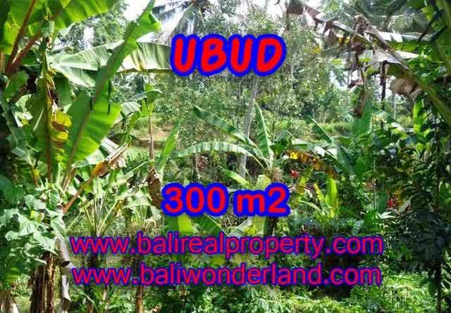 Property in Bali for sale, Astonishing land for sale in Ubud Bali – TJUB415