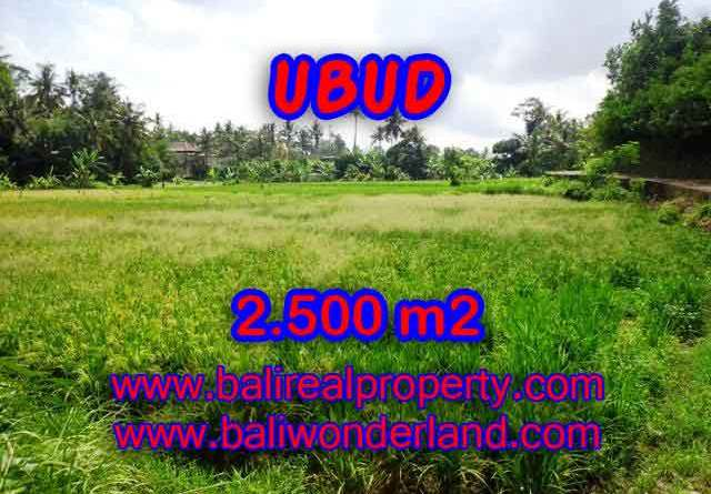 Attractive Property for sale in Bali, land for sale in Ubud – TJUB418
