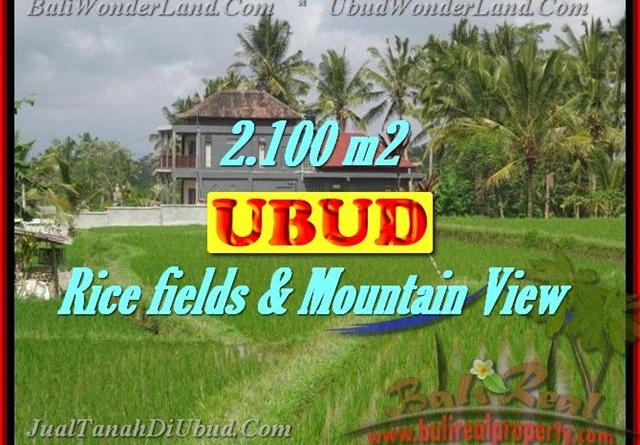 Excellent Property for sale in Bali, land for sale in Ubud Bali – TJUB423