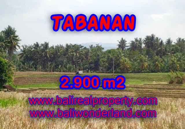 Land for sale in Bali, Fantastic view in Tabanan selemadeg – TJTB136