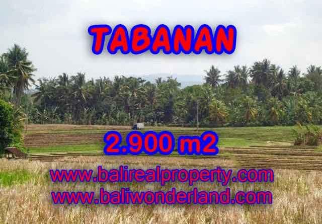 Land for sale in Bali, Fantastic view in Tabanan selemadeg – TJTB136